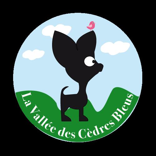 logo_chihuahua